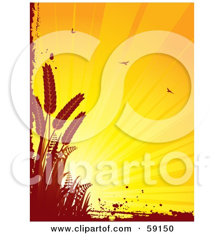 Royalty-Free (RF) Clipart Illustration of a Shining Orange Background With Birds, Bordered By Red Grunge And Wheat by elaineitalia