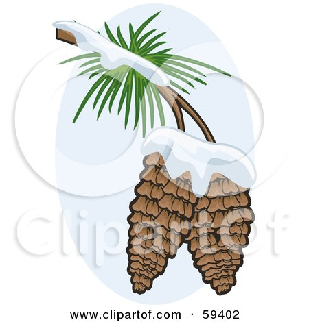 Royalty-Free (RF) Clipart Illustration of Two Pinecones Flocked In Snow On The Branch Of A Tree by r formidable