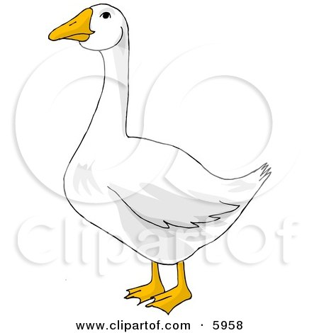 White Goose with Orange Bill and Feet Clipart Picture by djart