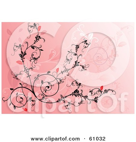 Royalty-free (RF) Clipart Illustration of an Ornate Black And Red Vine Scroll Background On Pink by pauloribau