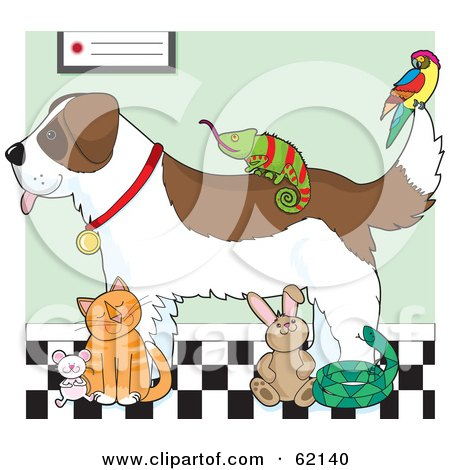 Royalty-Free (RF) Clipart Illustration of a Saint Bernard Dog, Chameleon, Parrot, Mouse, Cat, Rabbit And Snake In A Veterinary Clinic by Maria Bell