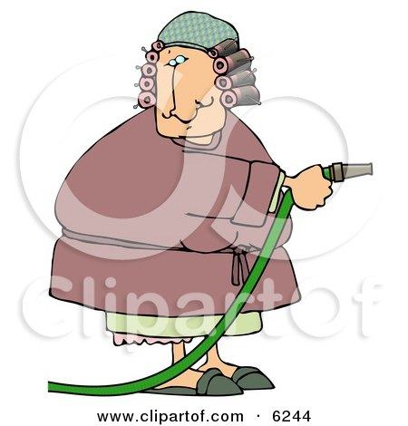 Woman in a Robe With Hair in Curlers, Using a Garden Hose to Water Clipart Picture by djart