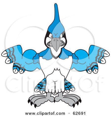 Royalty-Free (RF) Clipart Illustration of a Blue Jay Character School Mascot With Big Muscles by Toons4Biz