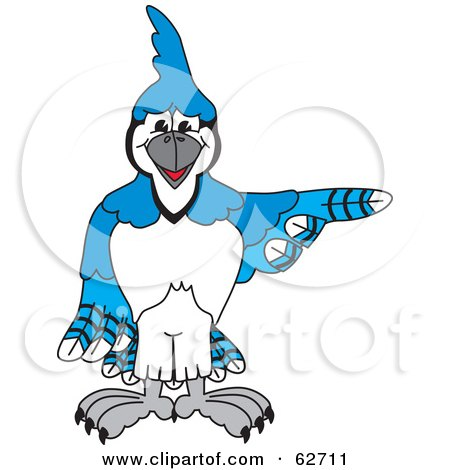 Royalty-Free (RF) Clipart Illustration of a Blue Jay Character School Mascot Pointing Right by Toons4Biz