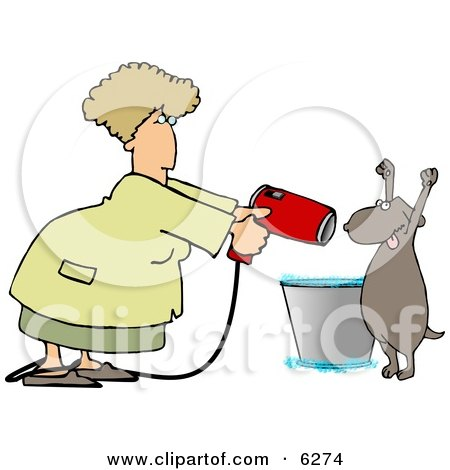 Dog Being Dried by a Female Dog Groomer Clipart Picture by djart