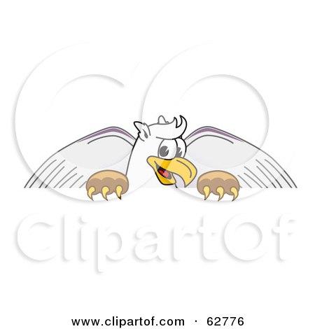 Blank Griffin