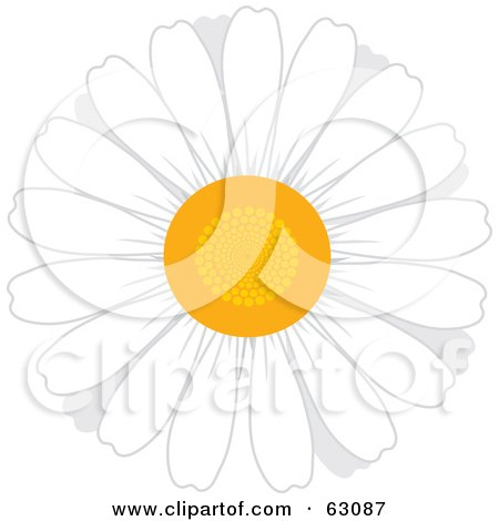 Royalty-Free (RF) Clipart Illustration of a Round White Daisy Flower With A Yellow Center by Rosie Piter