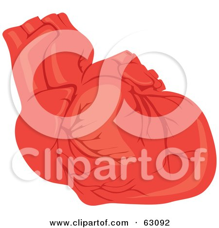 Royalty-Free (RF) Clipart Illustration of a Human Heart With Veins by Rosie Piter