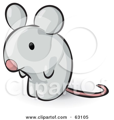 Animal Factor Gray Mouse Posters, Art Prints