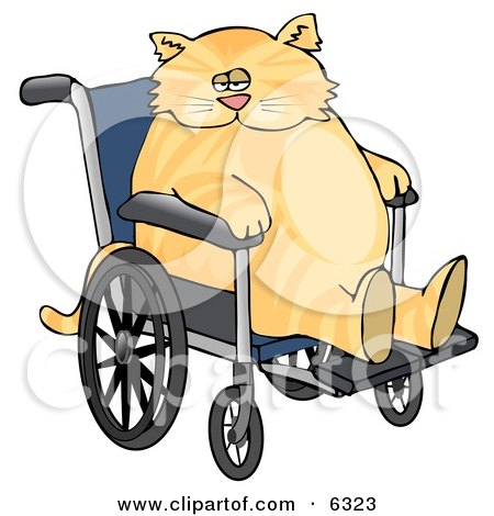 Chubby Orange Cat Sitting in a Wheelchair in a Hospital Clipart Picture by djart