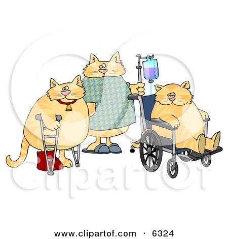 Three Orange Cats With IV Dispensers, Crutches, Casts and Wheelchairs in a Hospital Clipart Picture by djart