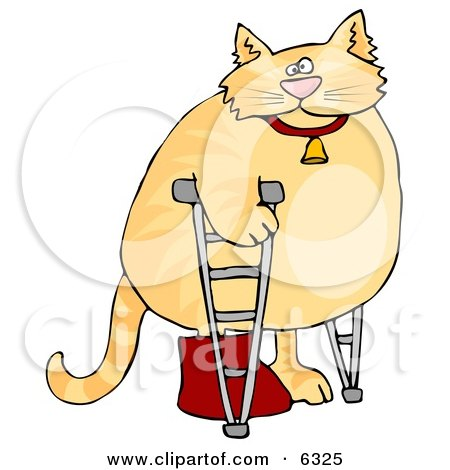 Chubby Orange Cat Walking on Crutches in a Hospital, One Leg in a Cast Clipart Picture by djart