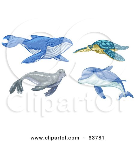 Digital Collage Of Ocean Animals; Whale, Turtle, Seal And Dolphin Posters, Art Prints