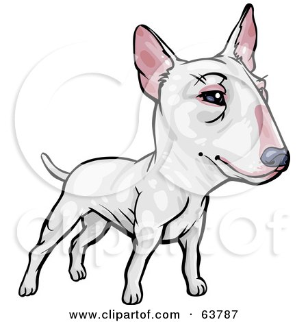 Royalty-Free (RF) Clipart Illustration of a Friendly White Bull Terrier Dog by Tonis Pan