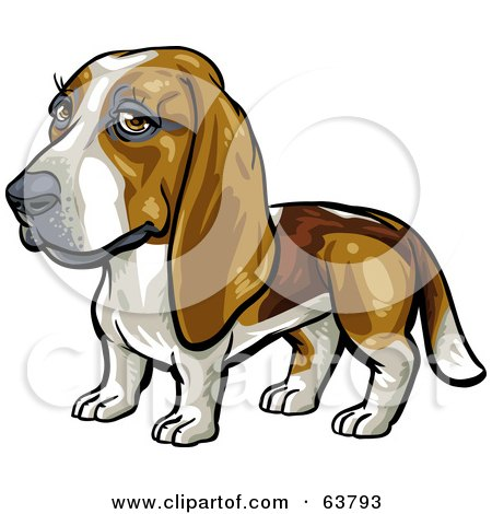 Royalty-Free (RF) Clipart Illustration of a Friendly Basset Hound Dog by Tonis Pan