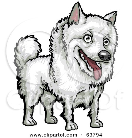 Royalty-Free (RF) Clipart Illustration of a Friendly White American Eskimo Dog by Tonis Pan