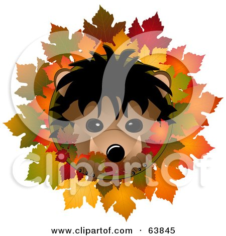 Royalty-Free (RF) Clipart Illustration of a Cute Hedgehog In An Autumn Leaf Circle On White by elaineitalia