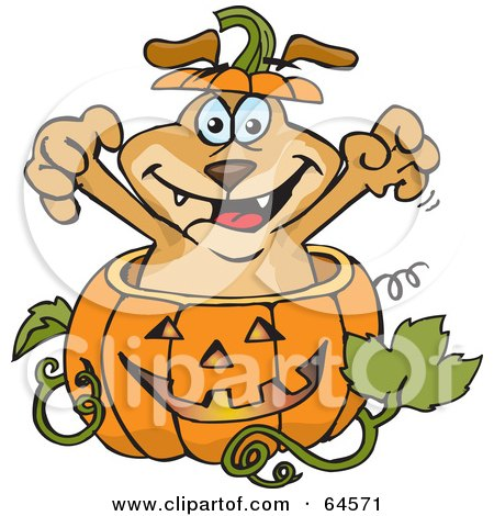 Royalty-Free (RF) Clipart Illustration of a Sparkey Dog Popping Out Of A Halloween Pumpkin by Dennis Holmes Designs