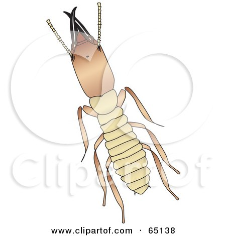 Royalty-Free (RF) Clipart Illustration of an Aerial View Of A Termite by Dennis Holmes Designs