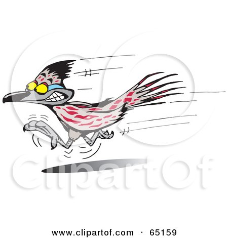 Royalty-Free (RF) Clipart of Roadrunners, Illustrations, Vector ...