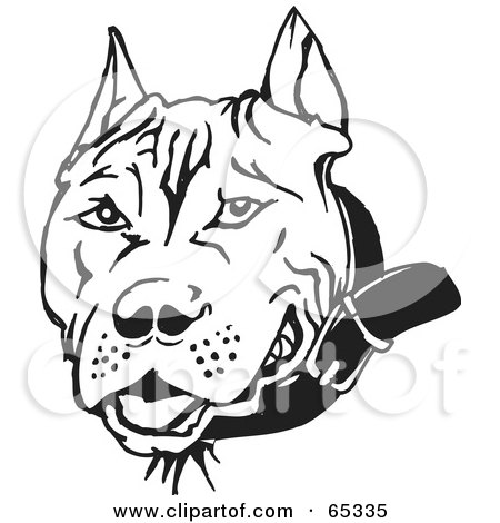 Royalty-free clipart picture of a black and white pit bull dog face,