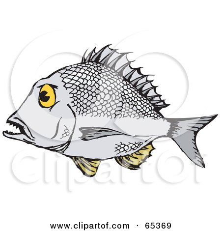 Royalty-Free (RF) Clipart Illustration of a Profiled Bream Fish by Dennis Holmes Designs
