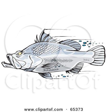 Royalty-Free (RF) Clipart Illustration of a Fast Barramundi Fish Swimming by Dennis Holmes Designs