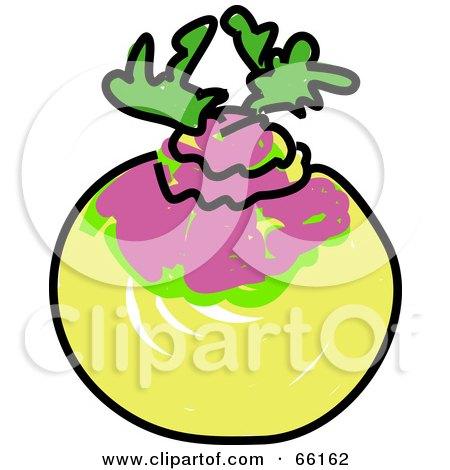 Sketched Turnip Posters, Art Prints