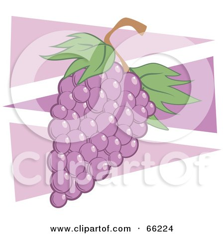 Royalty-Free (RF) Clipart Illustration of Purple Grapes Over Purple Triangles by Prawny