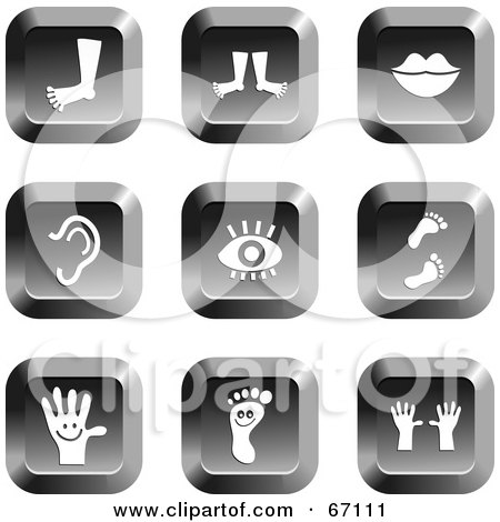 Royalty-Free (RF) Clipart Illustration of a Digital Collage Of Chrome Square Anatomy Buttons by Prawny
