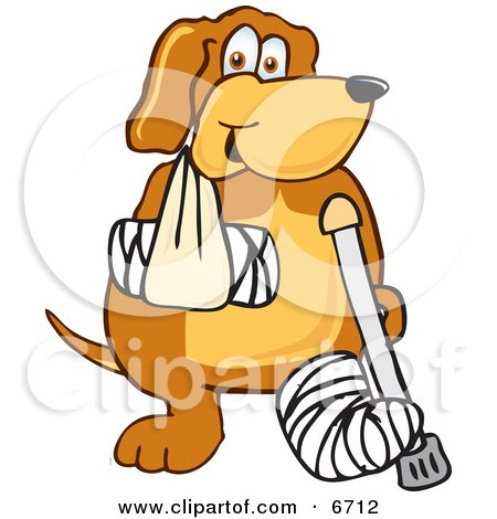 Funnies 6712-Brown-Dog-Mascot-Cartoon-Character-With-An-Arm-And-Leg-Bandaged-Up-Clipart-Picture