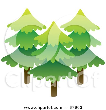Royalty-Free (RF) Clipart Illustration of Three Tall Evergreen Trees by Rosie Piter
