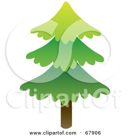 Royalty-Free (RF) Clipart Illustration of a Single Tall Evergreen Tree by Rosie Piter