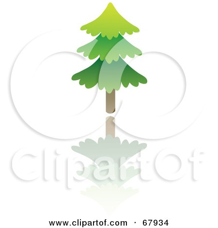 Royalty-Free (RF) Clipart Illustration of an Evergreen Tree With a Reflection by Rosie Piter