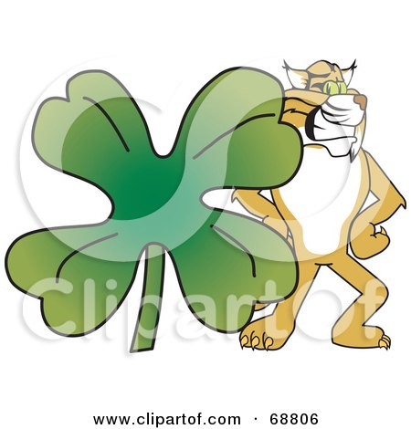 Bobcat Character With a Clover Posters, Art Prints