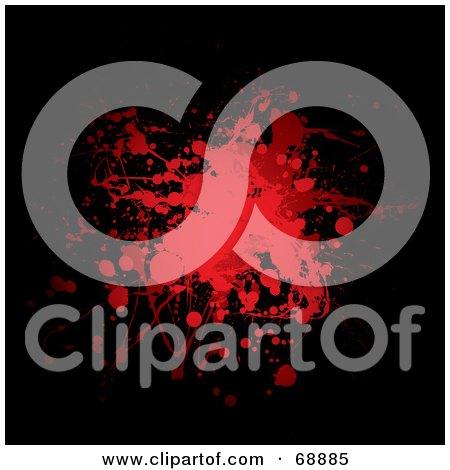 blood splatter black background. Red And Black Blood Splatter