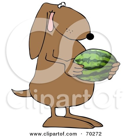 Royalty-Free (RF) Clipart Illustration of a Brown Dog Holding A Watermelon by djart