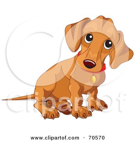 Royalty-Free (RF) Clipart Illustration of a Beige Wiener Dog Puppy Sitting by Pushkin