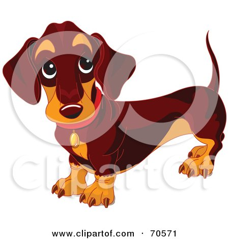 Royalty-Free (RF) Clipart Illustration of a Dark Wiener Dog Standing And Looking Up by Pushkin