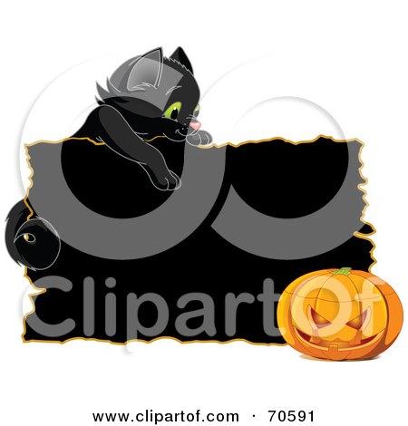 Black Kitten Looking Over A Black Sign At A Halloween Pumpkin Posters, Art Prints