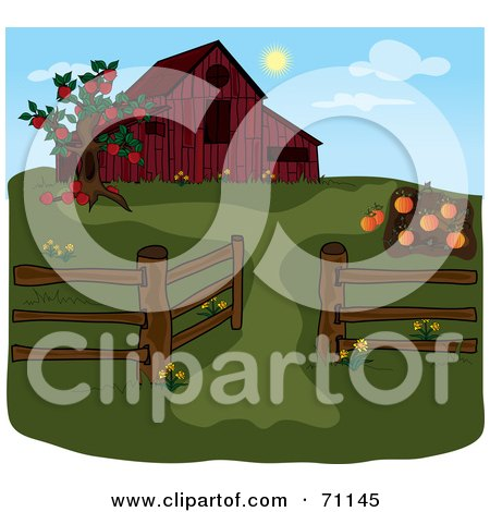 Apple Tree And Pumpkin Patch By A Red Barn During The Day Posters, Art Prints