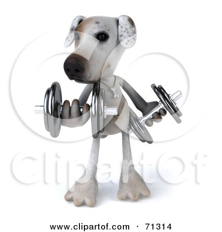 Royalty-Free (RF) Clipart Illustration of a 3d Jack Russell Terrier Pooch Character Lifting Weights by Julos