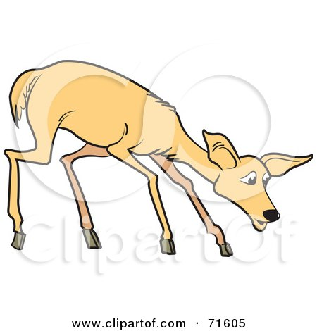 Royalty-Free (RF) Clipart Illustration of a Shy Young Deer by Lal Perera