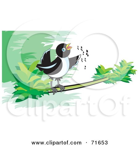 Royalty-Free (RF) Clipart Illustration of a Magpie Bird Singing On A Branch by Lal Perera