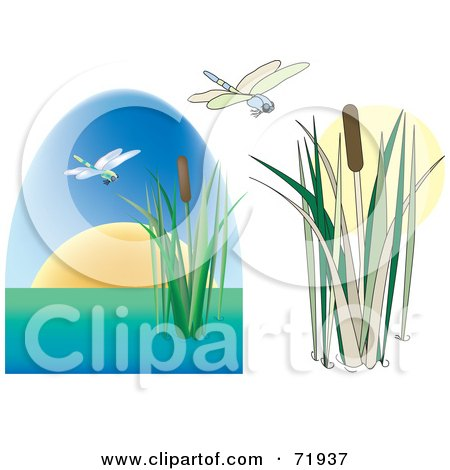 Royalty-Free (RF) Clipart Illustration of a Digital Collage Of Dragonflies With Cattails, One Version With A Sunset by inkgraphics