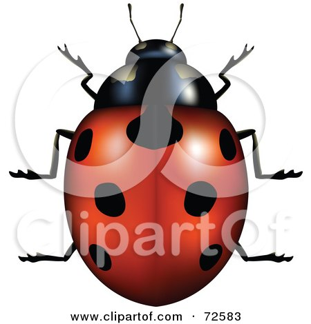 Royalty-Free (RF) Clipart Illustration of a 3d Red Ladybug With Perfect Black Spots by cidepix