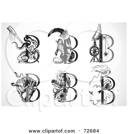 Royalty-Free (RF) Clipart Illustration of a Digital Collage Of Black And White Animal Letters; B by BestVector