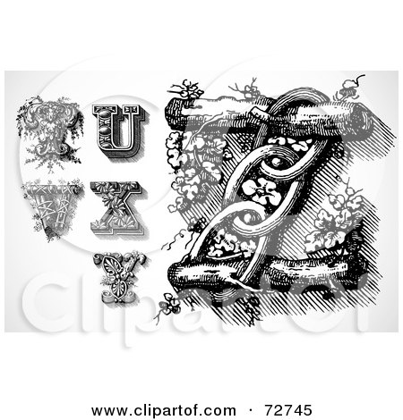 Royalty-Free (RF) Clipart Illustration of a Digital Collage Of Elegant Black And White Leafy Letters; T Through Z by BestVector
