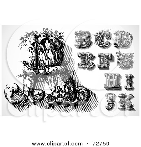 Royalty-Free (RF) Clipart Illustration of a Digital Collage Of Elegant Black And White Leafy Letters; A Through K by BestVector