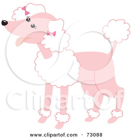 Royalty-Free (RF) Clipart Illustration of a Happy Pink Poodle With White Fluff by Rosie Piter